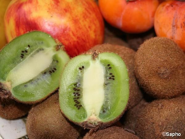 Kiwi autofertile SOLISSIMO®