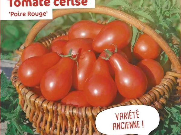Tomate cerise Poire Rouge