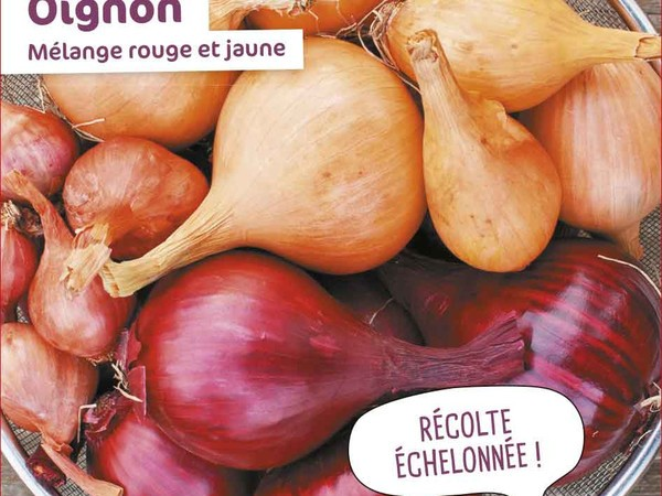 Oignon Mélange Rouge et Jaune