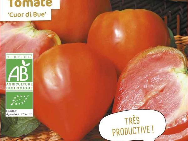 Tomate Cuor di Bue