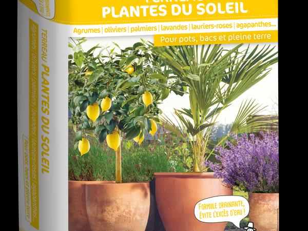 Terreau Plantes du soleil