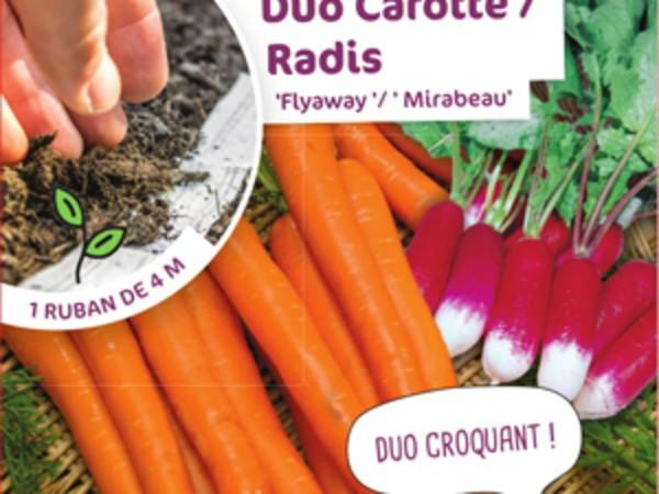 Duo Carotte / Radis Flyaway '/ ' Mirabeau'