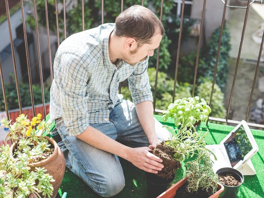 Jardinier débutant