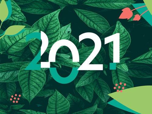 LES 7 BONNES RESOLUTIONS DU COACH POUR LE JARDIN EN 2021